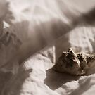 shells on the bed by NicNilla