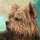 Painting of a Cute and Hairy Yorkshire Terrier by ibadishi
