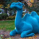 Blue camel by Manon Boily