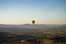 Early Morning Flight by eegibson