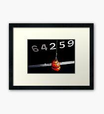 boat reference number Framed Print