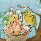 Canaries by MariaSibireva