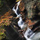 New York's Watkins Glen VII by PJS15204