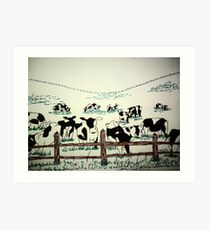 Cows in field Art Print