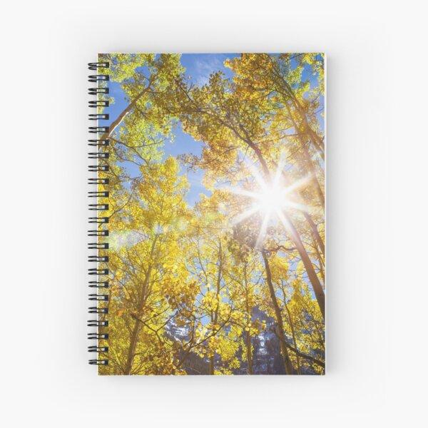 Aspen Trees in Fall Spiral Notebook