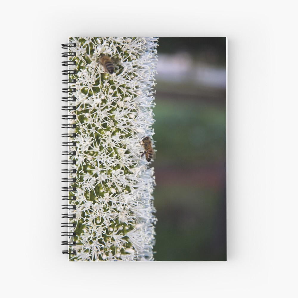 Grasstree flower with bees Spiral Notebook