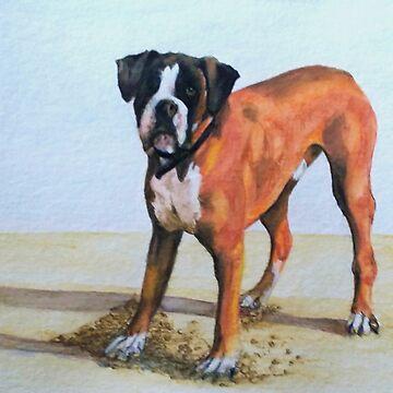 Boxer Dog by Croftsie