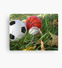 which sport will you choose Canvas Print