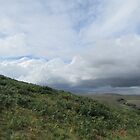 Cloudscape Over Ugborough Beacon by lezvee