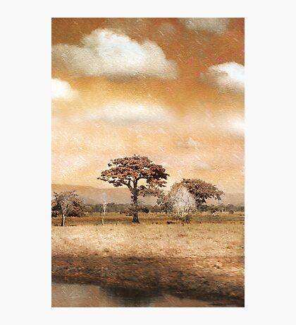 Evening Showers Photographic Print