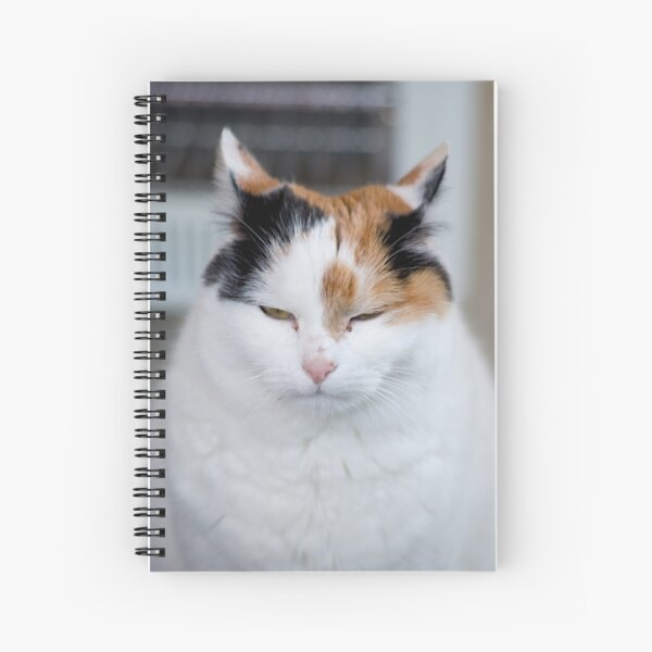 I'm Not Grumpy Spiral Notebook