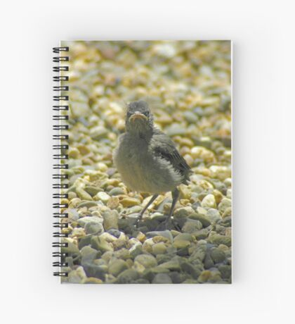 """""""I Don't Care""""  Chick Card Spiral Notebook"""