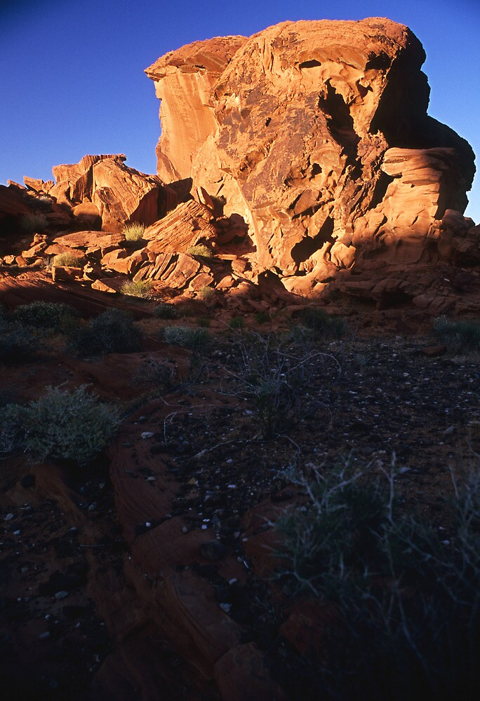 Megalith in the Valley of Fire, Nevada  by Tom Fant