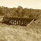 Old Train Bridge by HellYeahKate