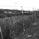 Black and White Photograph - Metal Fence  by HellYeahKate
