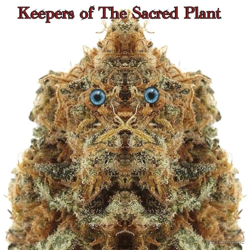Keepers of The Sacred Plant - KOTSP Dogma by irishfisherman2
