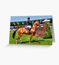 Gorgeous horse Greeting Card