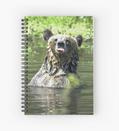 """I Don't Care"" Bear  Card Spiral Notebook"