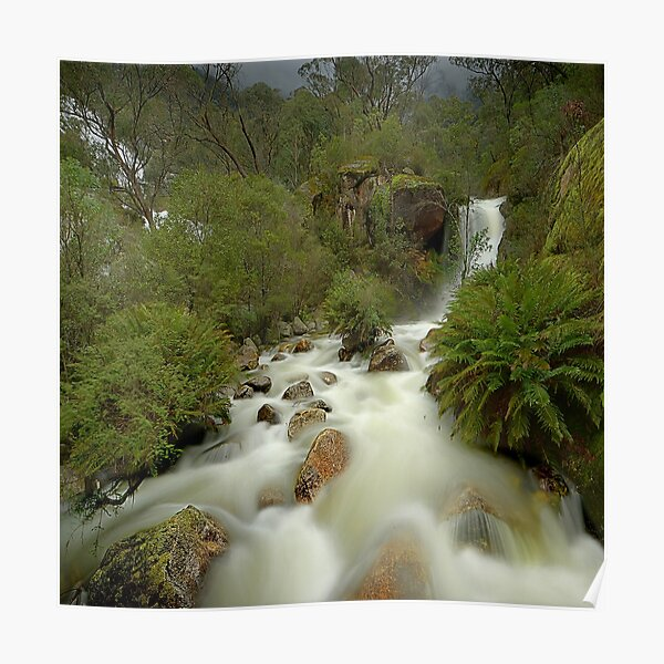 Stormy day, Mount Buffalo Poster