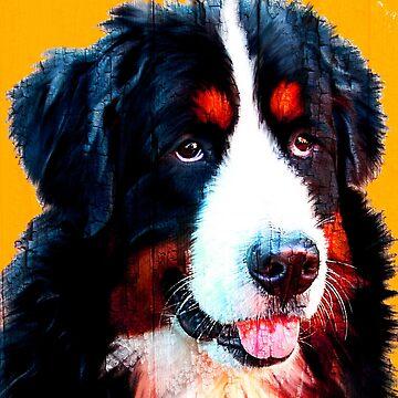 BERNESE MOUNTAIN DOG by IMPACTEES