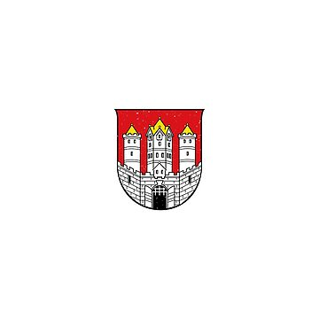 Salzburg Souvernir City Coat of Arms T Shirt by rpimentel