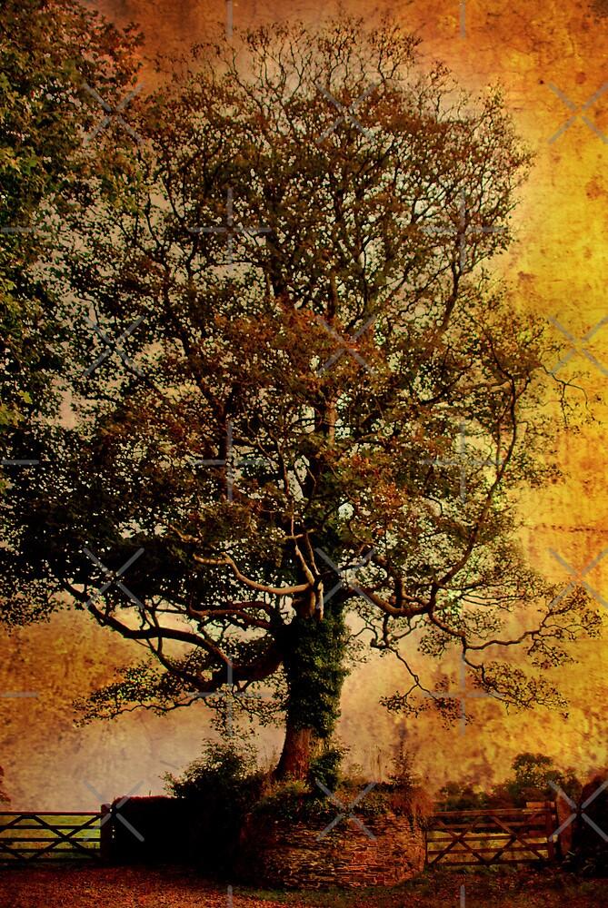 A Tree at Antony by Catherine Hamilton-Veal  ©