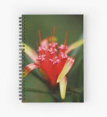 Red Beauty Spiral Notebook
