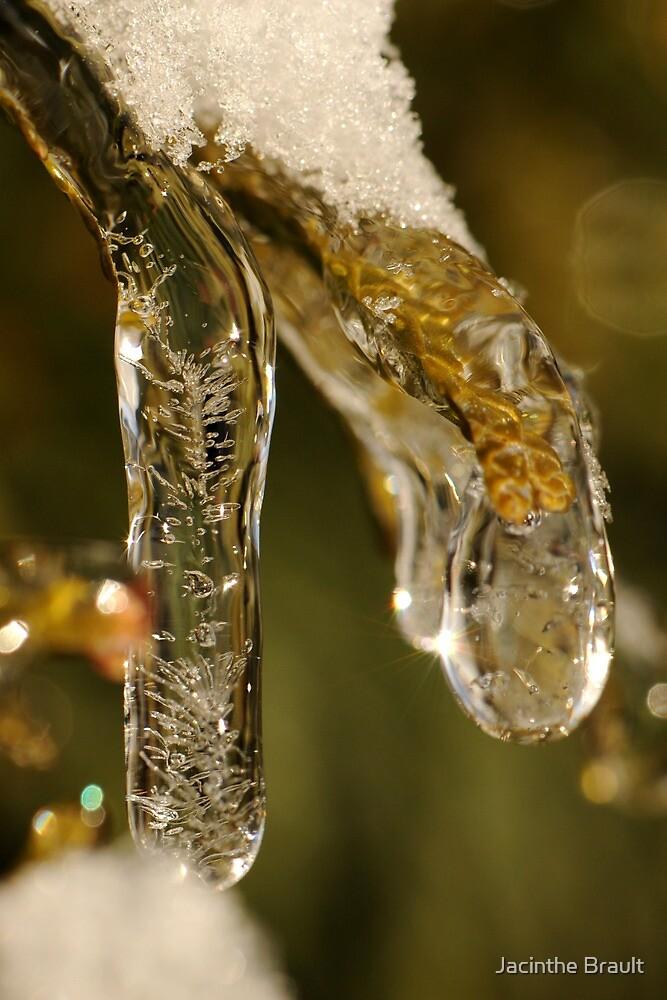 Jewel of Ice 1 by Jacinthe Brault