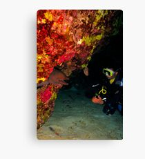 A giant moray greeting a diver in a cave Canvas Print