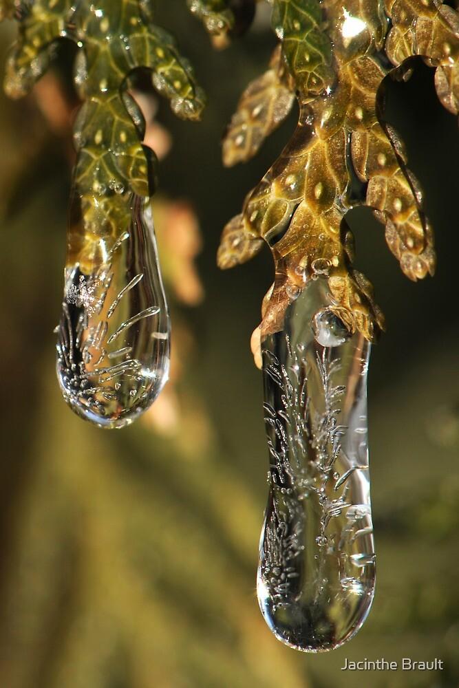 Jewel of Ice by Jacinthe Brault
