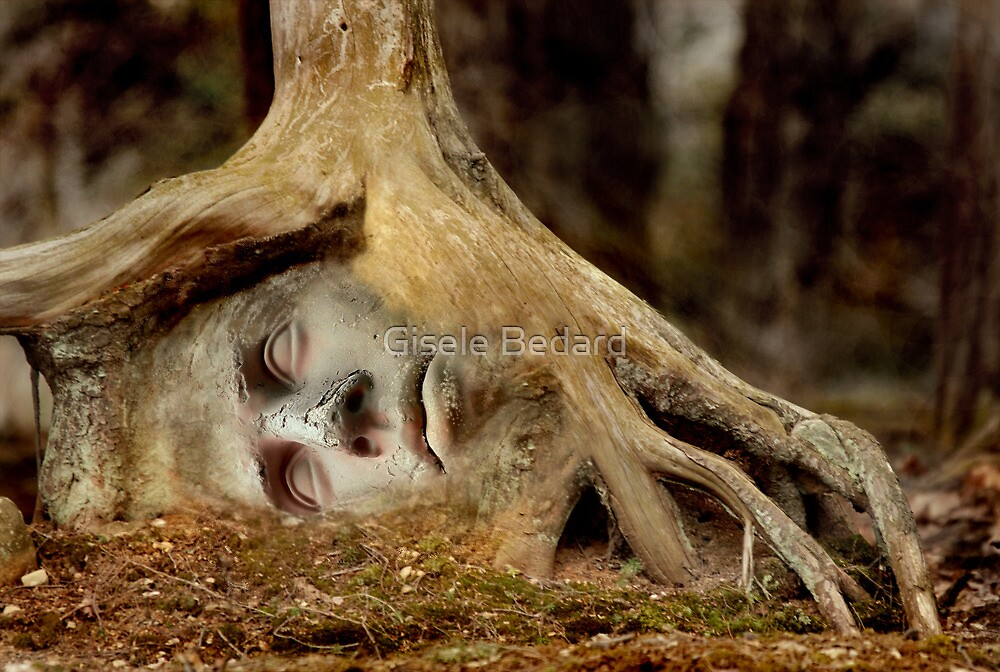 Spirit of the Forest by Gisele Bedard