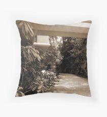 Mill Run, PA: Falling Water Throw Pillow