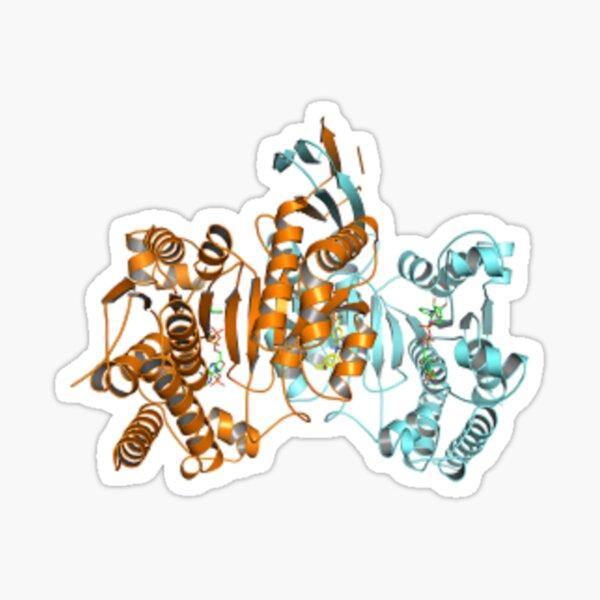 #Enzyme #Informatics, #EnzymeInformatics, particle #chemistry medicine biology science biochemistry shape chemical Sticker