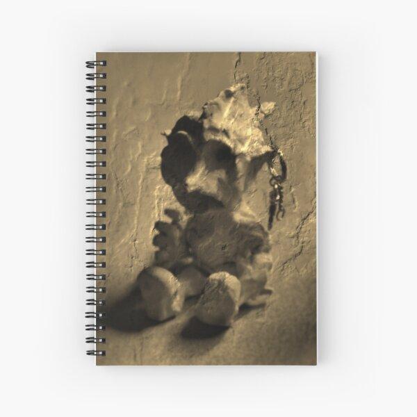 Golem Moderna Spiral Notebook