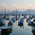 Lerici Bay by Neil Buchan-Grant