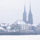 Winter in Poland by Kasia Nowak