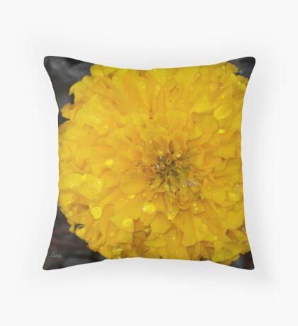 Marigold after a rain Throw Pillow