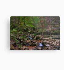 Blanchard Springs Little Stream Metal Print