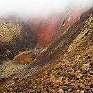 Timanfaya National Park (2) by Neil Buchan-Grant