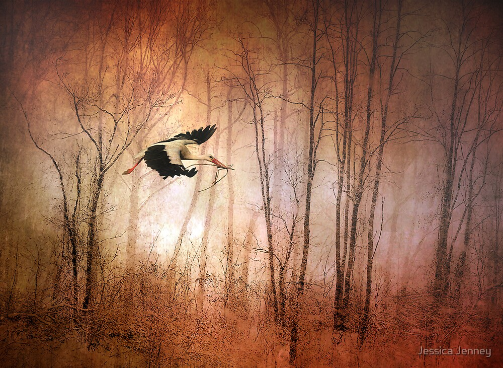 Fly Away Home by Jessica Jenney