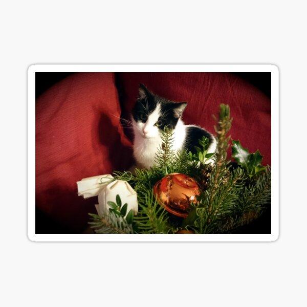 Katze Lilli mag Weihnachten Sticker