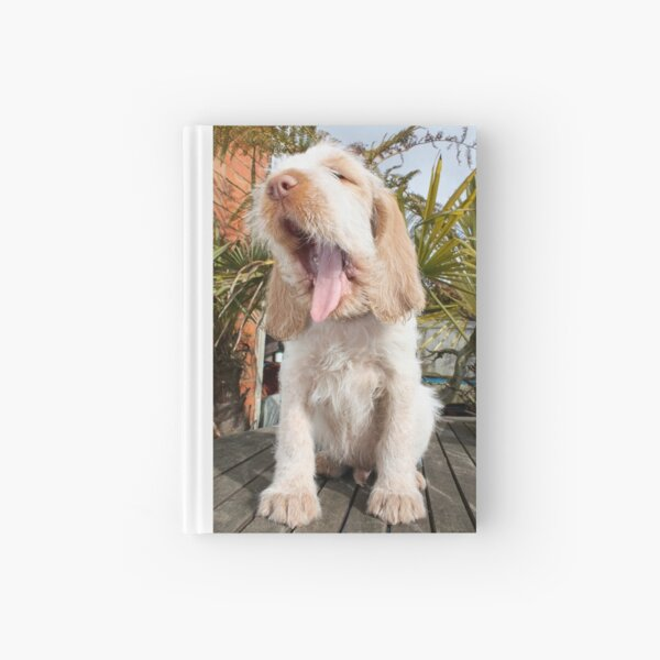 Orange and White Italian Spinone Puppy Dog Hardcover Journal