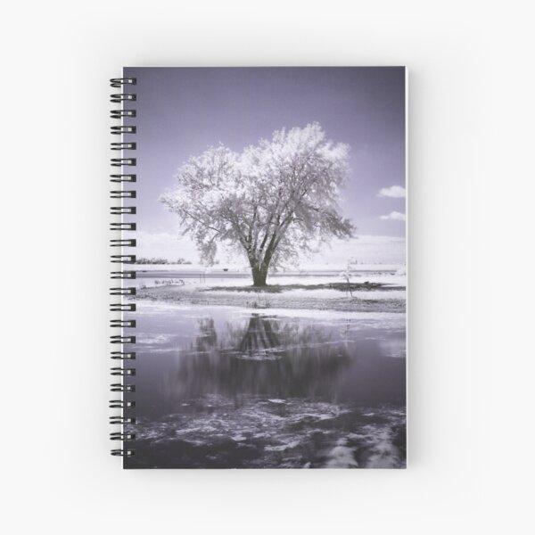 Cloudtree Spiral Notebook