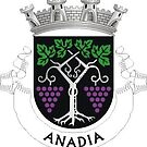 Coat of Arms of Anadia, Portugal by Tonbbo