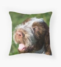 Spinone Puppy Smile - Brown Roan Italian Spinone Puppy Dog Head Shot Floor Pillow