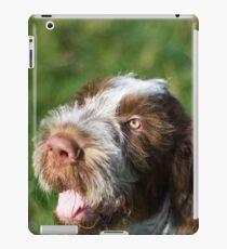 Spinone Puppy Smile - Brown Roan Italian Spinone Puppy Dog Head Shot iPad Case/Skin