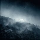 Night Shadows - Misty Forest at Night by Dirk Wuestenhagen
