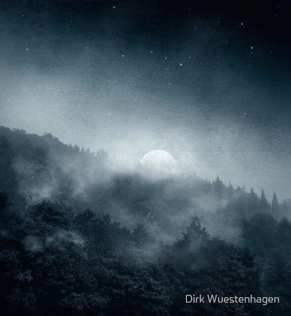 Night Shadows - Misty Forest at Night by Dirk Wuestenhagen