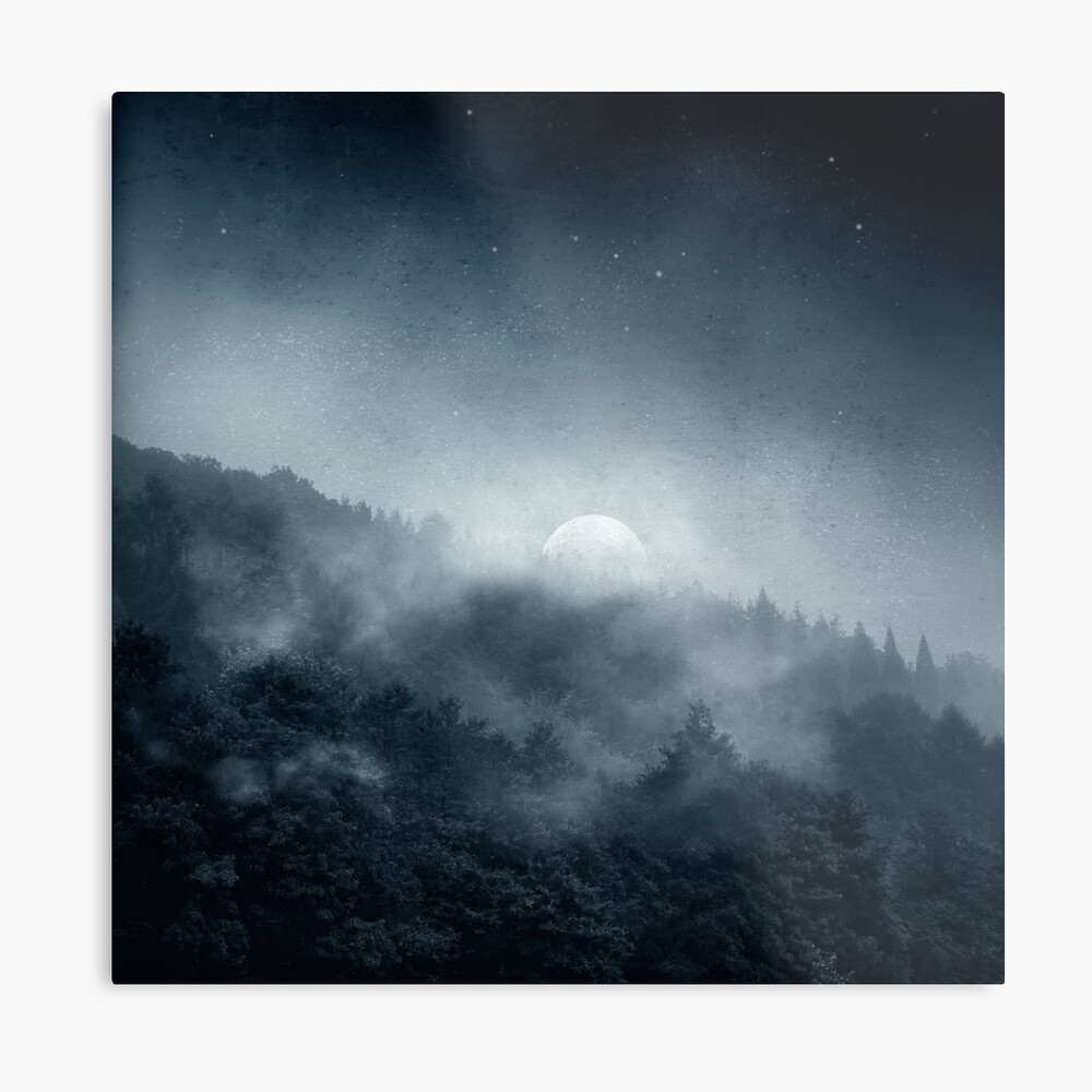 Night Shadows - Misty Forest at Night Metal Print