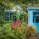 Coastal Cottage by Viv Thompson